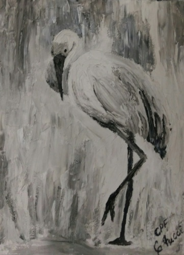 Louisiana Crane